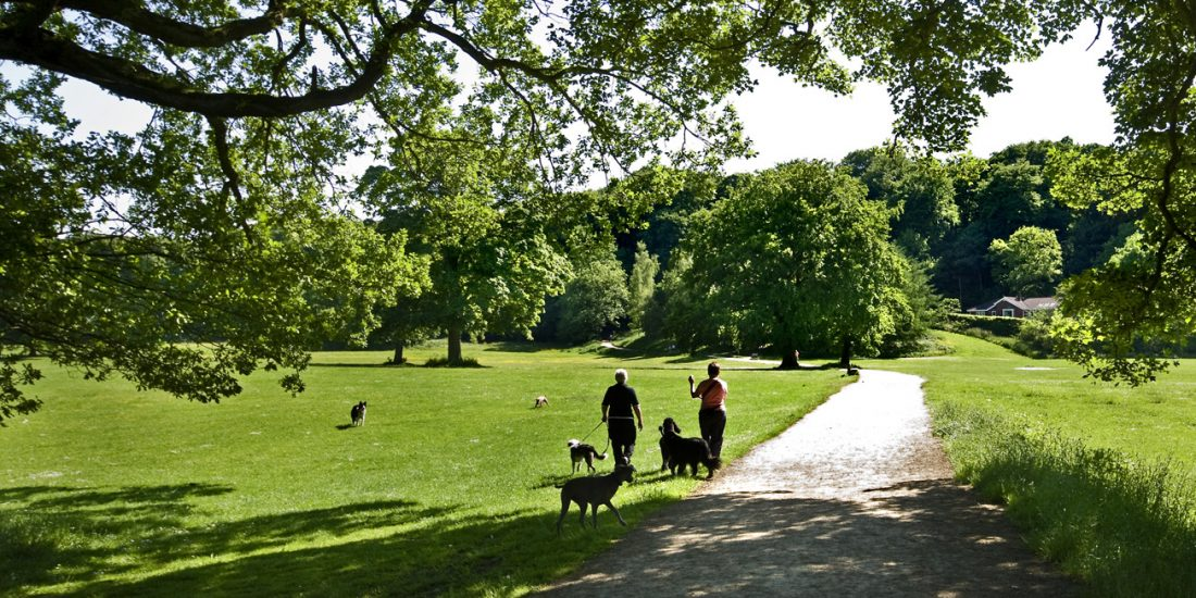 Brabyns Park